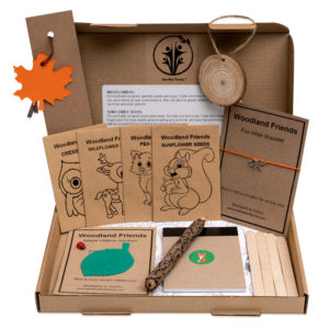 Woodland Froends Activity Pack For Kids