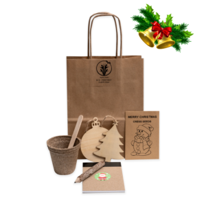 Christmas Eco-Friendly party bag for kids
